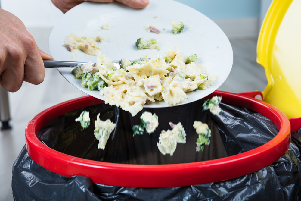 Выкидывает еду фото Равновесие